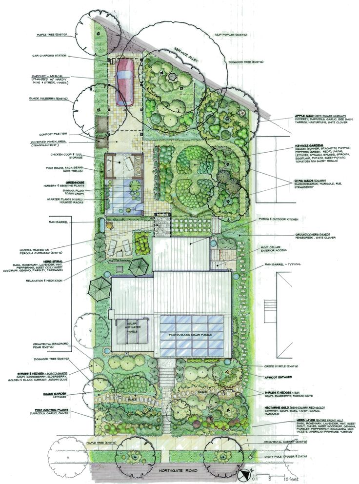 permaculture-site-plan_large.jpg 1,452×1,959 pixels