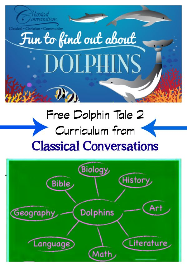 Free Dolphin Tale 2 Curriculum from Classical Conversations AND a chance to win a Dolphin Tale 2 prize pack.  Giveaway ends Friday, 9/12/14