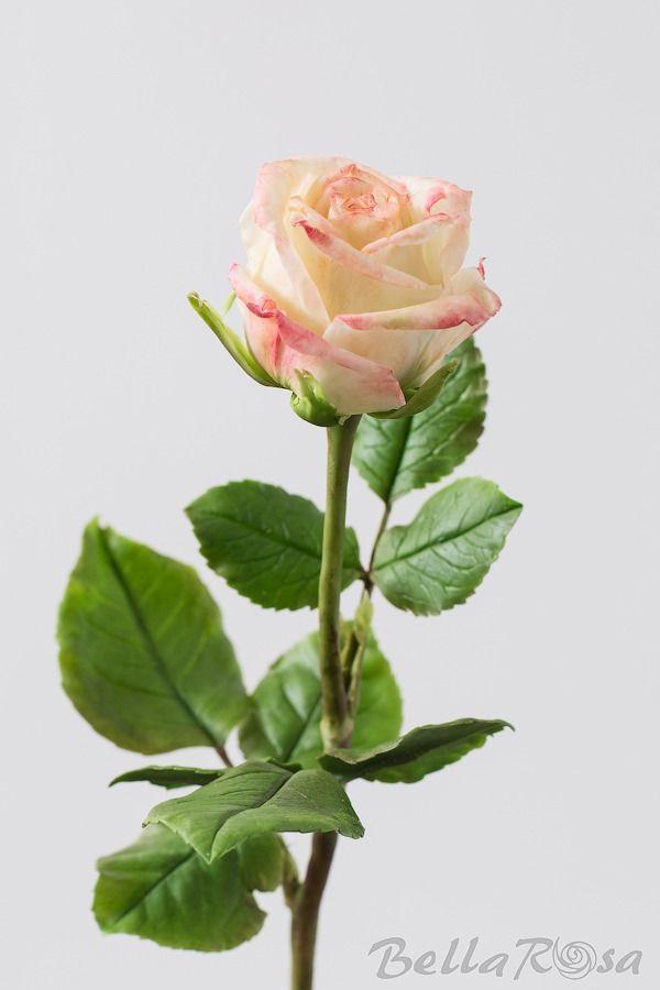 обучение цветоделию
