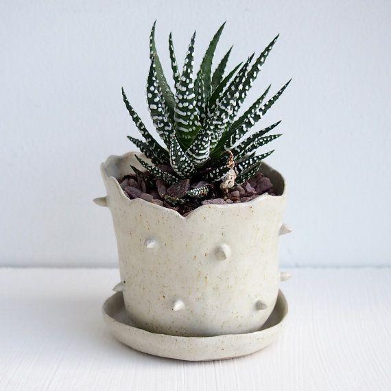How To Create An Indoor Garden                                                                                                                                                                                 More