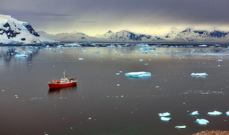 В тихой бухте. Антарктика, M/S Antarctic Dream  Справа внизу - пингвинчики (в т.ч. для понимания масштаба). Автор: Александр Перов
