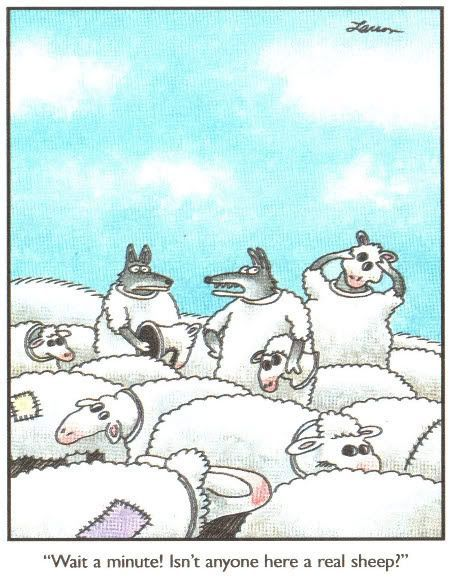 The Far Side: wolves sheep clothing - Yep pretty hard to spot the real sheep these days - especially in a church.