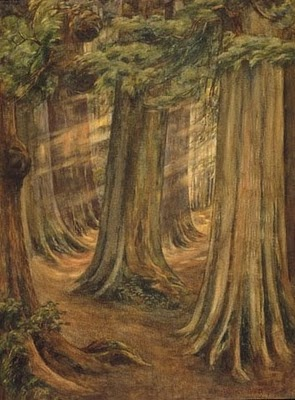 Emily Carr- studying her in art class. Canadian artist who had a thing for trees…