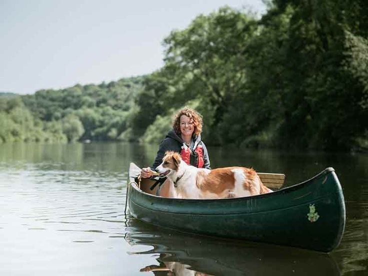 Good Dog Walks Wye Valley