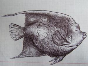 Рыба, Алексей Горишний, рисунок ручкой в тетради