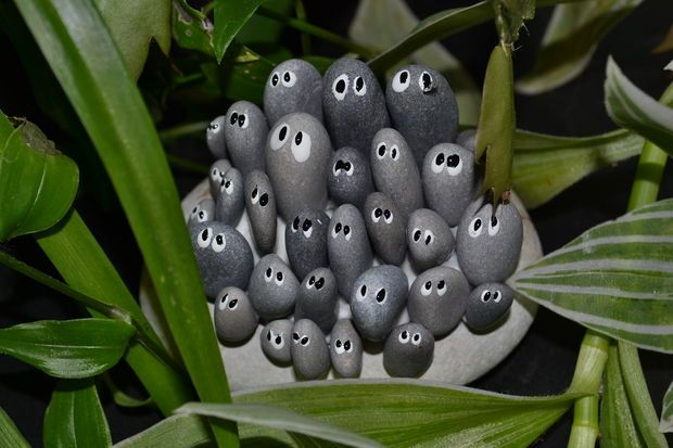 """pebble """"people"""" hidden amongst the foliage -- for the garden, or hilarious to do in a potted plant gift"""