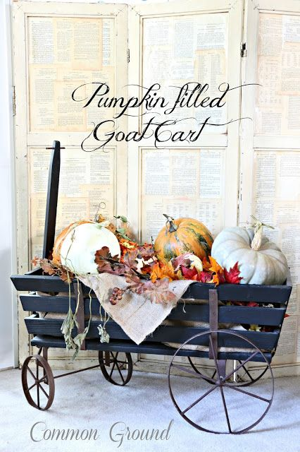 Common Ground: Pumpkin Filled Goat Cart...hmmmm find one of these carts!