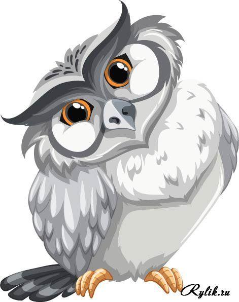 תוצאת תמונה עבור сова  рисунки