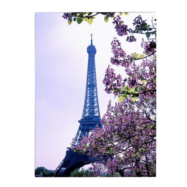 <li>Artist: Kathy Yates</li><li>Title: Eiffel Tower with Blossoms</li><li>Product type: Giclee, gallery wrapped</li>
