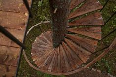 deck bench tree | spiral stairs around tree trunk