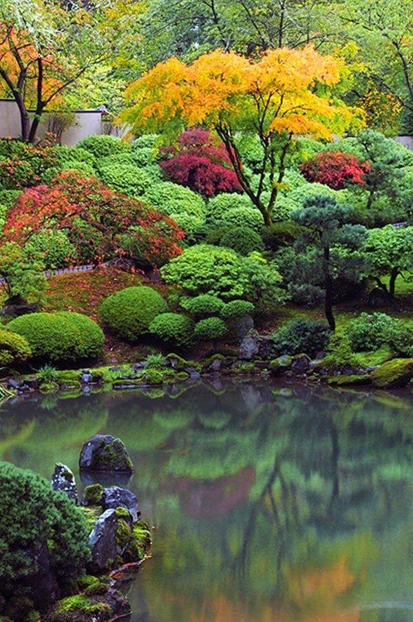 Jardim japonês.  Fotografia:  http://tempodadelicadeza.com.br/.
