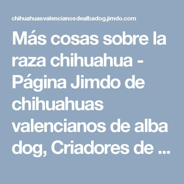 Más cosas sobre la raza chihuahua - Página Jimdo de chihuahuas valencianos de alba dog, Criadores de chihuahua, venta de chihuahuas.