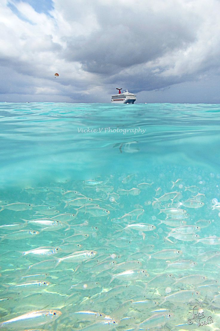 Half Moon Cay, private island Bahamas snorkeling Cruise ship.. I've been here.. It's the best place I've been yet. Paradise is too little of a word! :0)