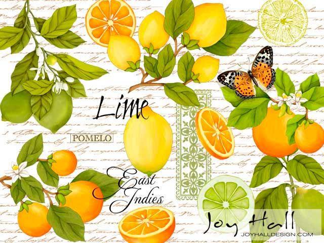 Limón/ pomelo/ flores azahar