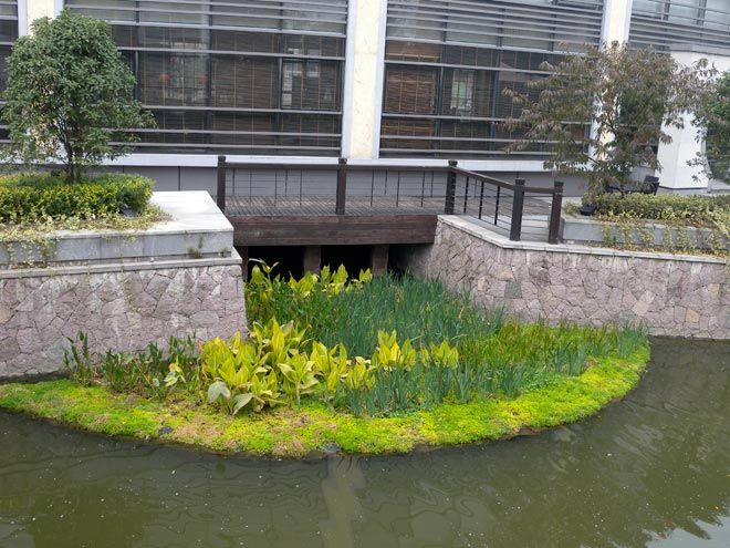 91 best images about floating wetlands on pinterest for Stormwater pond design