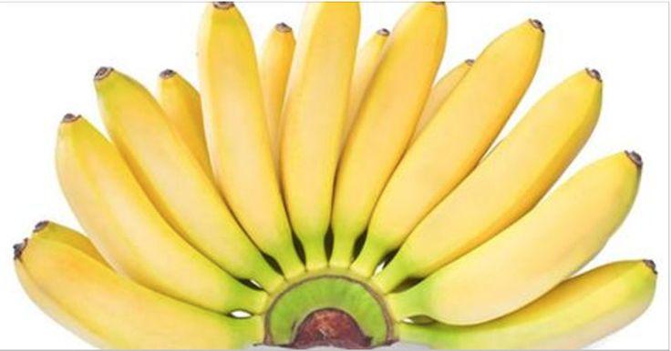 Se você é fã da banana, leia estes fatos sobre ela - o número 5 é muito interessante e poucas pessoas sabem! | Cura pela Natureza