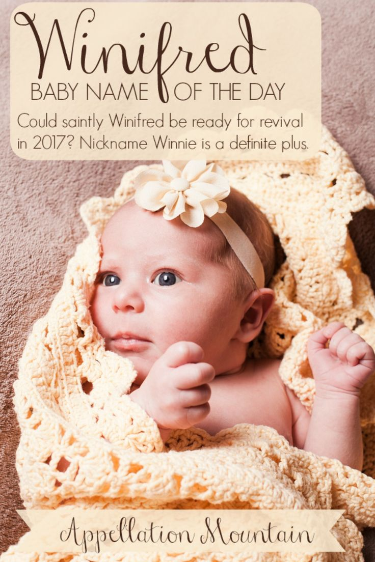 Vintage girl name Winifred comes with adorable nickname Winnie, and a distinctive sound. If you love names like Alice, Frances, and Edith, but want something  much less common, Winifred could be the name for you.