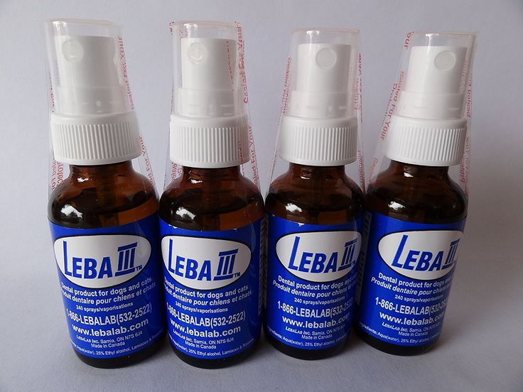 Leba III Pet Dental Spray - 4 Pack ** Remarkable product available now. - Cat Supplies