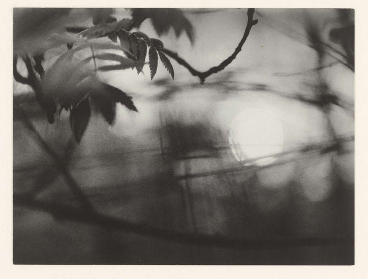 Landschap, Sanne Sannes, 1960 - 1967
