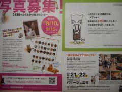 福岡県獣医師会からのご案内 2018年のカレンダーにあなたの猫の写真を載せちゃおう  カレンダー売上げの一部は不幸な猫や犬を増やさない為救う為の活動に使用します  チラシはお近くの動物病院や猫カフェ等にございます tags[福岡県]