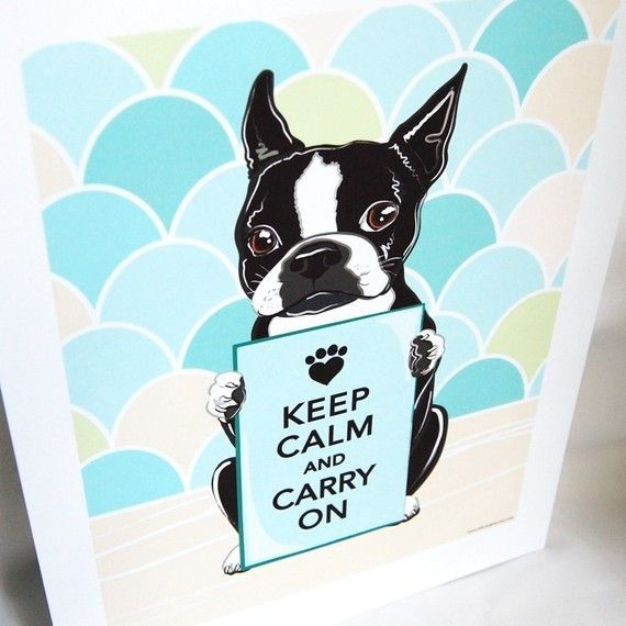 1000 Images About Boston Terrier Art Amp Illustration On