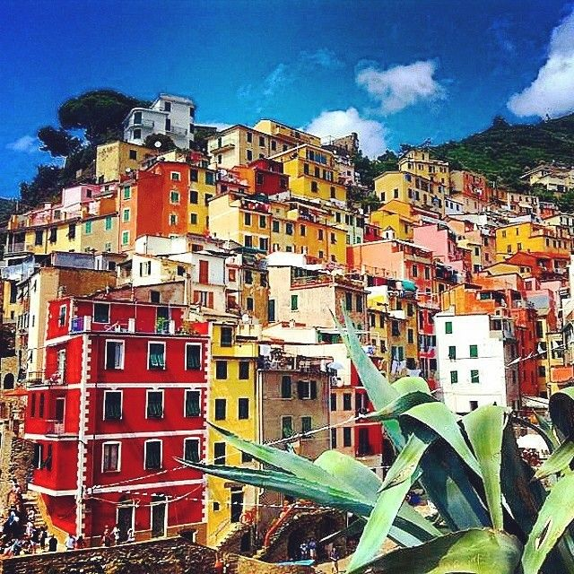 The very bright and colourful Cinque Terre in Italy snapped by @_weltenbummler  Tag #travelnewhorizons and we will upload our favourites ️ #travel #Italy