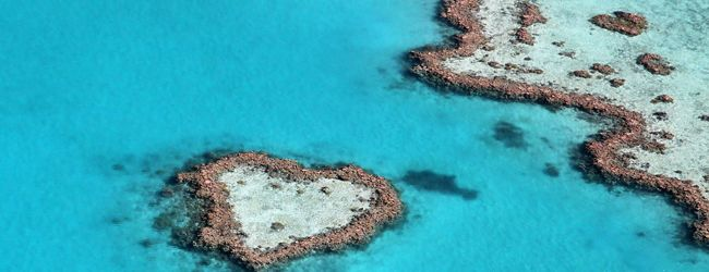 Whitsunday:- With a spectacular white coastline draped in lush green forest and 74 tropical islands sparkling in the crystal clear waters of the Great Barrier Reef, the Whitsundays is one of the most beautiful holiday destinations in Queensland.