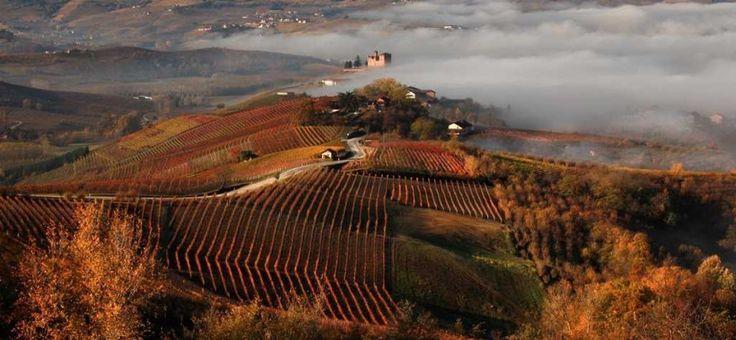 Fiera del Tartufo Piemonte terra di gourmet