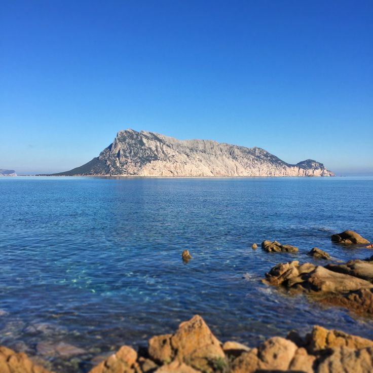 Tavolara da Cala Ginepro #sardegna #photo #foto #tavolara #immobiliare #realestate #islands #sea