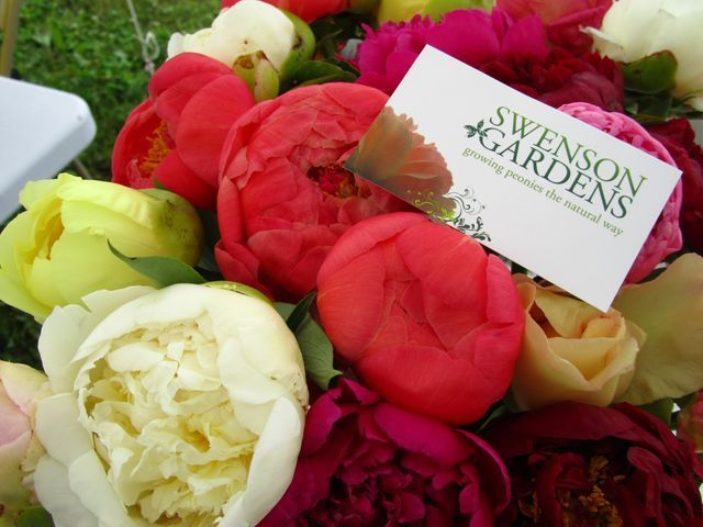 Swenson Gardens yearly Peony Tour!  2013 dates-June 21,22 Friday and Saturday.  Howard Lake, Mn.  A Slice of heaven!