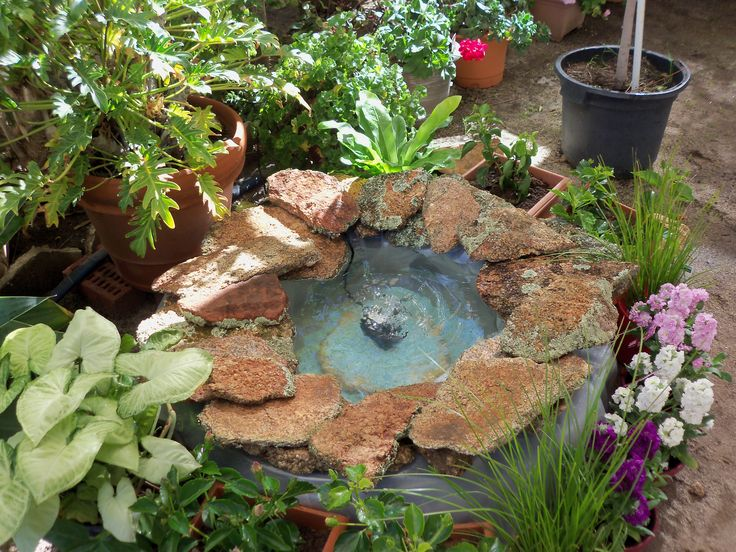 SMALL POND MADE FROM A LARGE TRUCK TYRE