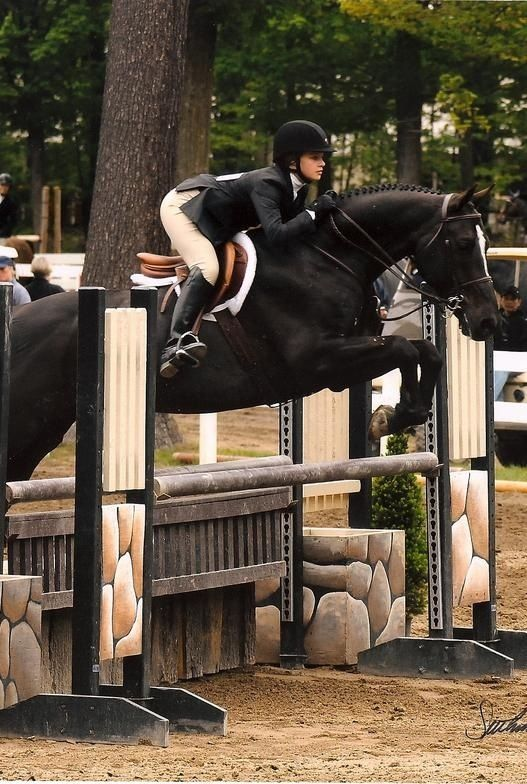 Perfection #equitation