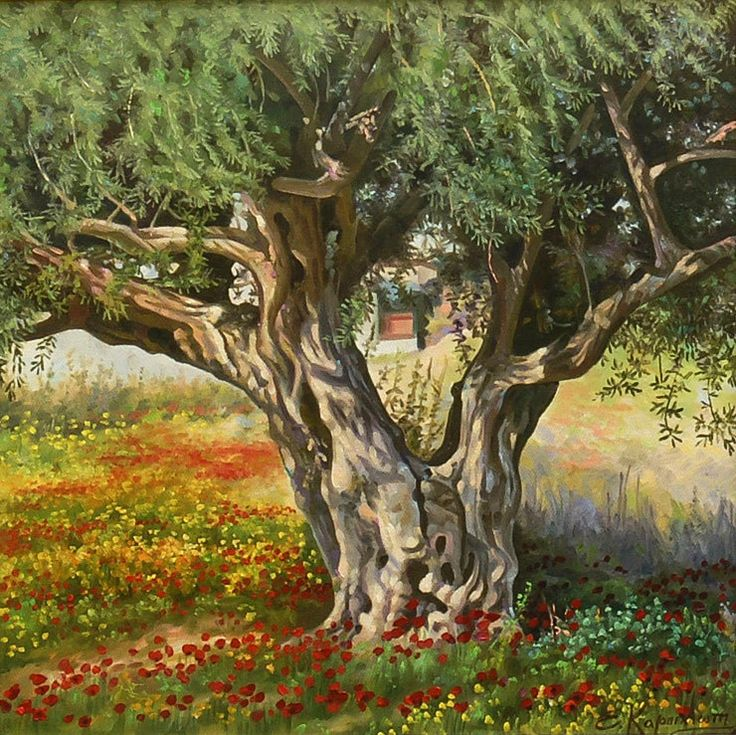 """FRAMED 21 x21"""" Olive Tree, Classic Painting on Canvas, Original Oil Landscape, Handmade Painting Fine art, Realism, original artwork, nature by OliviaArtGallery on Etsy"""