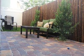 cody cakes: our back yard project