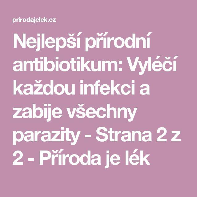 Nejlepší přírodní antibiotikum: Vyléčí každou infekci a zabije všechny parazity - Strana 2 z 2 - Příroda je lék