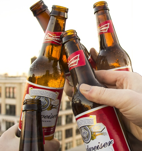 104 Best Images About All Things Beer On Pinterest