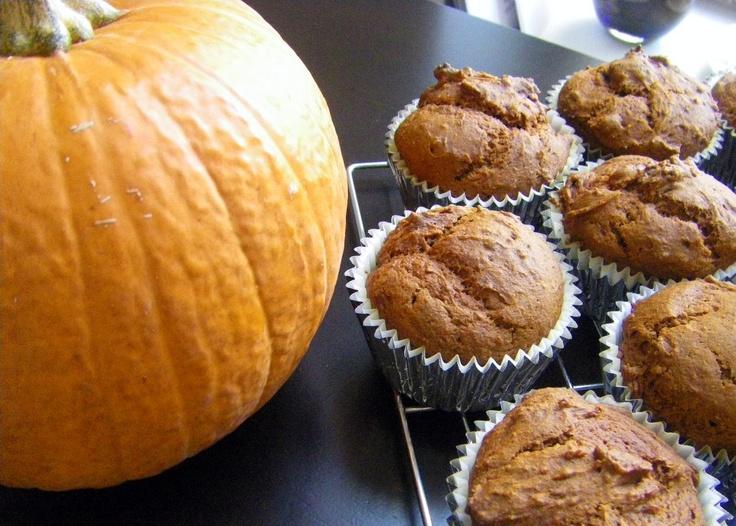 cupcakes de abóbora: deve ser mágico com recheio de doce de abóbora + coco e cobertura de creme fresco e neve de coco
