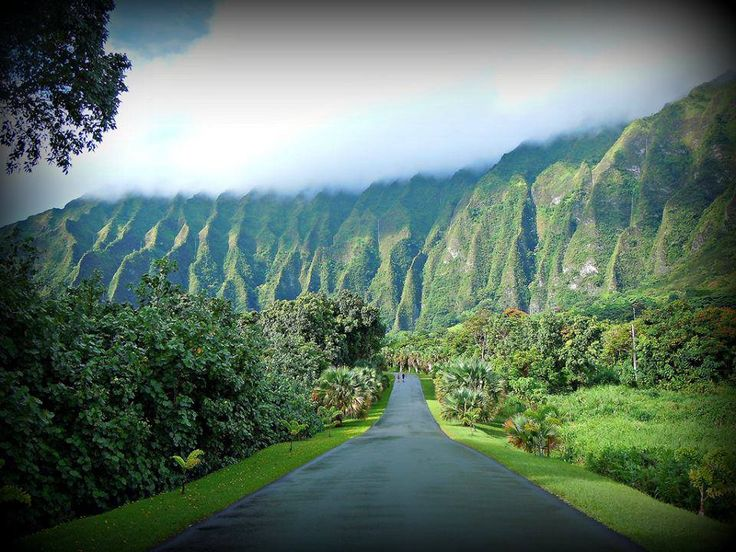 oahu dating ideas We discovered a total of 254 date ideas in or near honolulu, hawaii, including 219 fun or romantic activities in nearby cities within 25 miles.