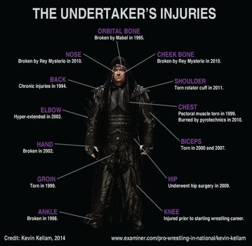 Undertaker's List of Injuries in WWE (With Picture)   Latest WWE News & Results , Elimination chamber News & Results