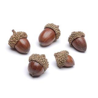 Darice®+Small+Acorn+Decoration+