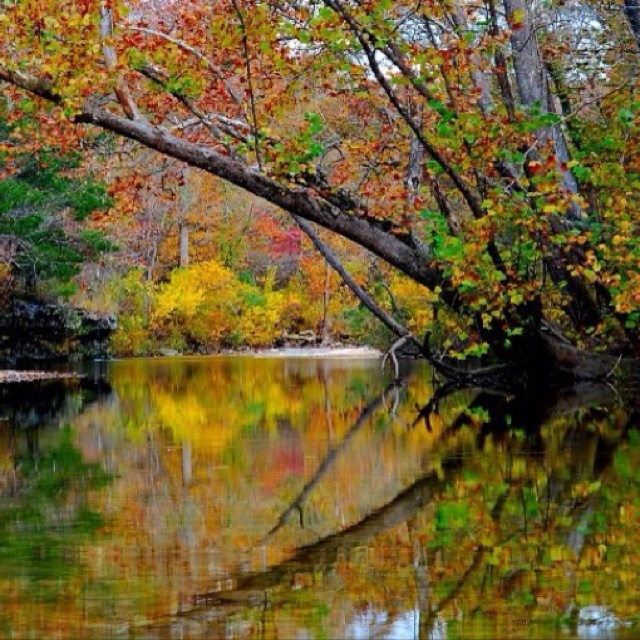 17 Best Images About The Ozark Mountains On Pinterest
