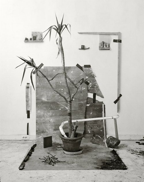 VLF (Thomas Cristiani and Antoine Roux)  (for display ideas, subject matter, compostition)