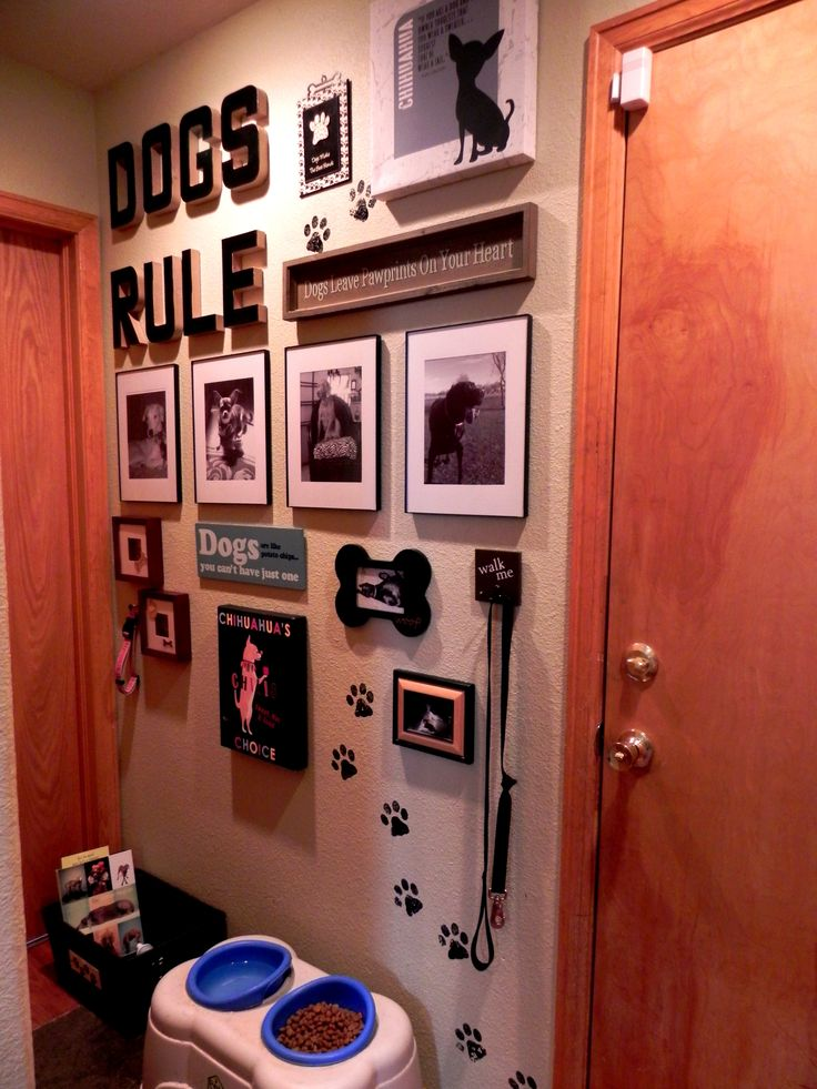 Create your own doggie collage on a wall.  This was easy and so much fun to do.  I think my dogs are a little spoiled...
