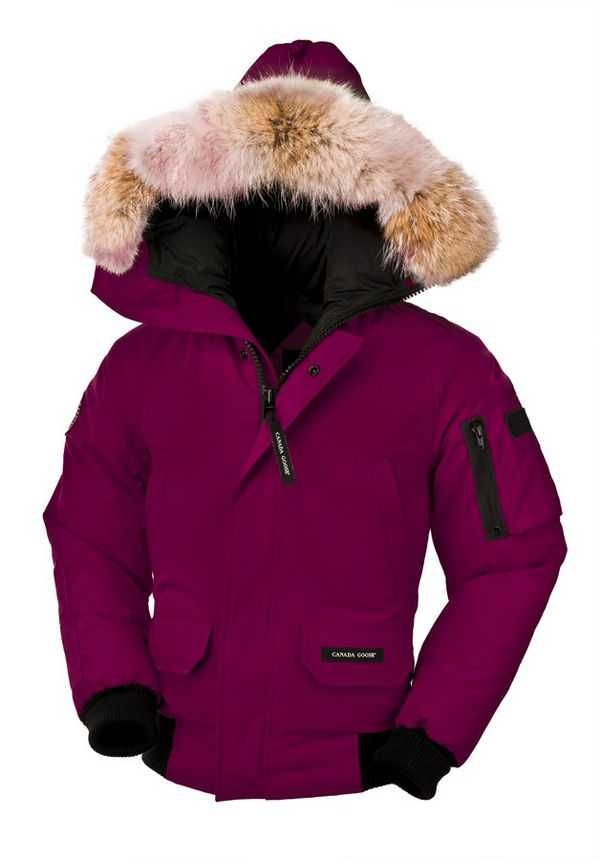 Canada Goose Chilliwack Bomber Berry Youth's On Sale