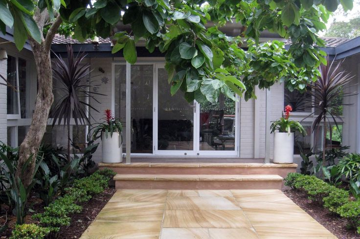 Trees to make an entrance! / Collections − Speciality Trees