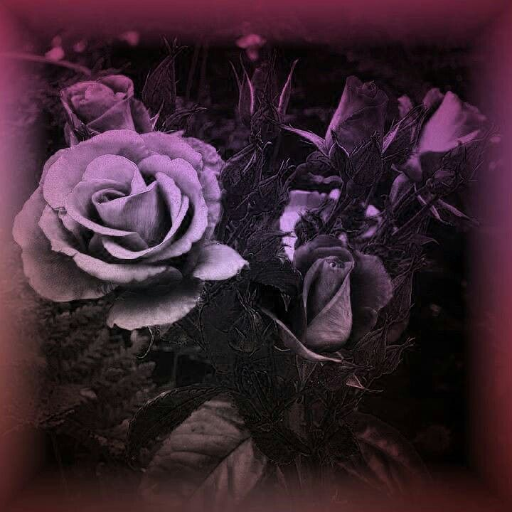 Beautiful | Dark art | Pinterest
