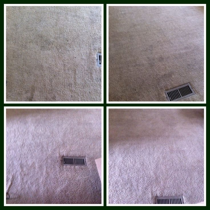 Ideas About Rug Doctor On Pinterest Carpet Cleaning Machines