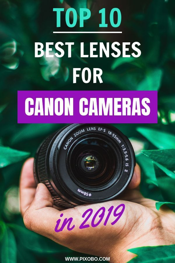 best canon camera 2020