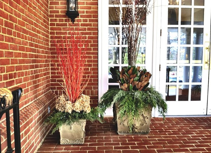 A spot of color and life on your front porch can ease the winter doldrums. So dust off your gardening gear and pot up a couple cold hardy containers. Plants in containers require different care than those in the ground. Being in a pot, there's less soil around roots to hold moisture, so container plants require more frequent watering. Those roots are also less insulated, and receive more exposure to the cold. For best results, use plants that are cold hardy two zones colder than your own…