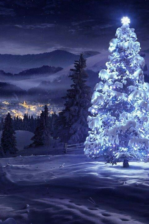 Silent snow covered night...all is calm...all is bright!
